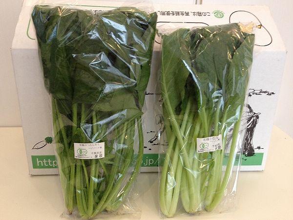 有機栽培の小松菜とほうれん草~野菜宅配まとめ