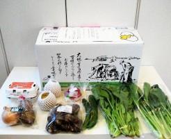 無農薬野菜のミレーリニューアルセット全体図
