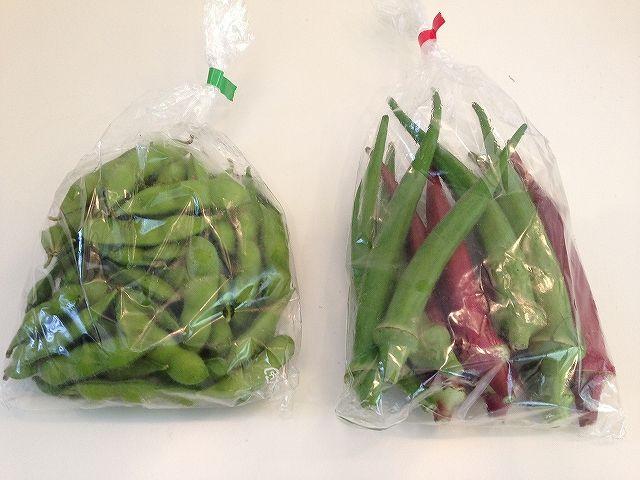 オクラと枝豆 | おいこファーム