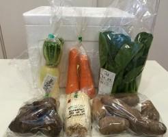 パルシステムのコトコトやりくり野菜セット