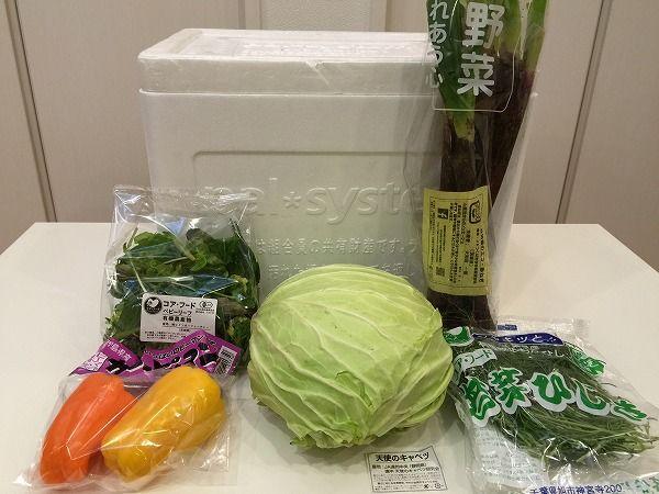 宅配6週目に届いた野菜一覧(パルシステム)