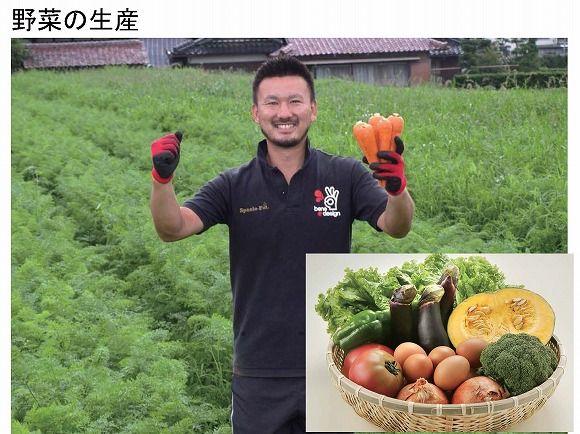 野菜の生産について