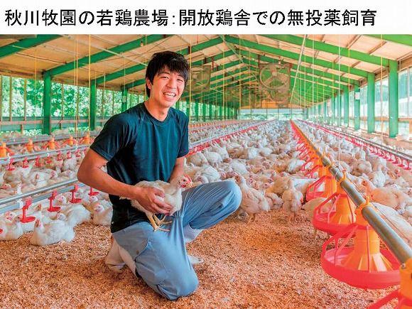 秋川牧園の若どり農場