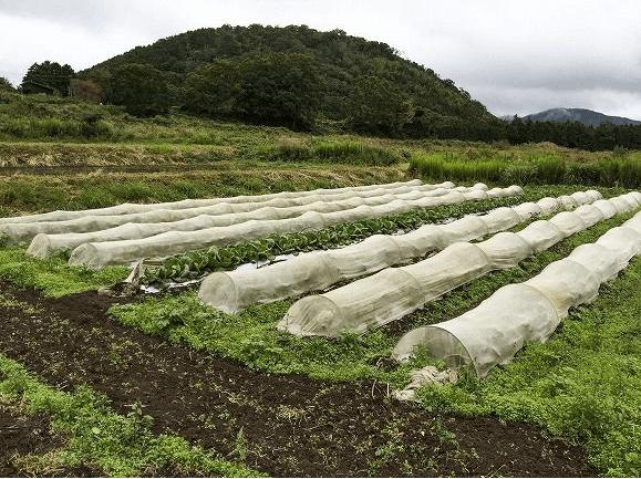秋川牧園メリットデメリット・評判16