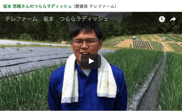 楽天ラグリ・評判48