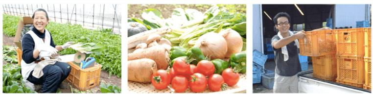 無農薬野菜のミレーメリットデメリット・評判42