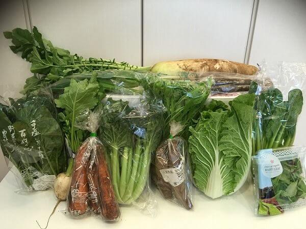 無農薬野菜のミレーの口コミ・評判・メリット・デメリット(買わなきゃ損セット)1