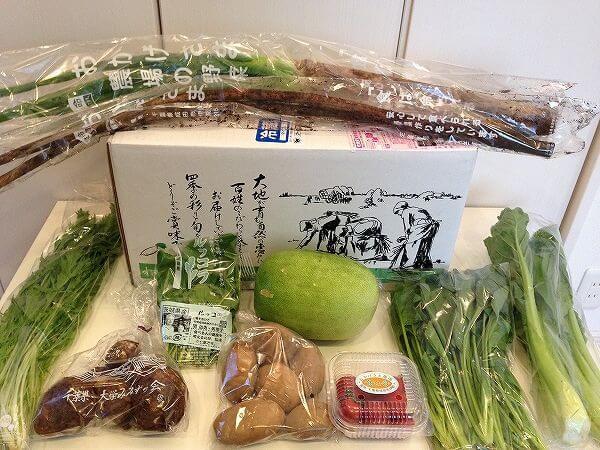 無農薬野菜のミレーの口コミ・評判・メリット・デメリット2