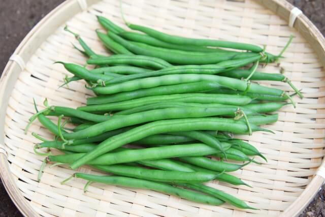 良質な野菜の見分け方・保存方法50