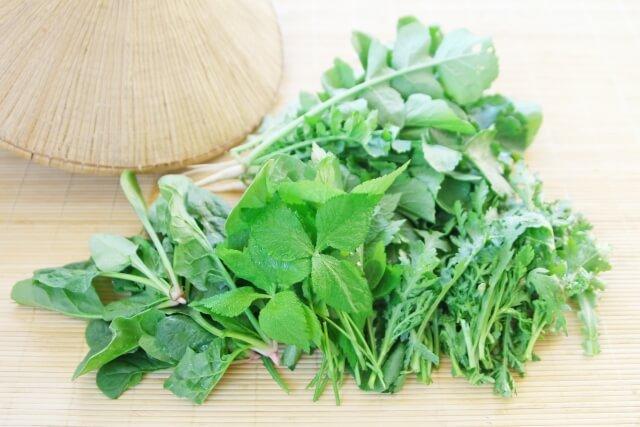良質な野菜の見分け方・保存方法53