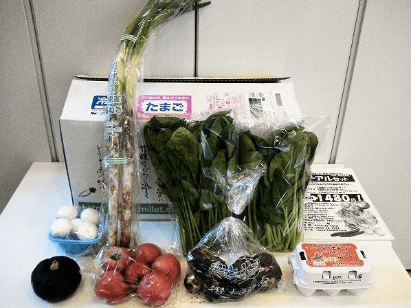 野菜宅配お試しセット安いランキング3