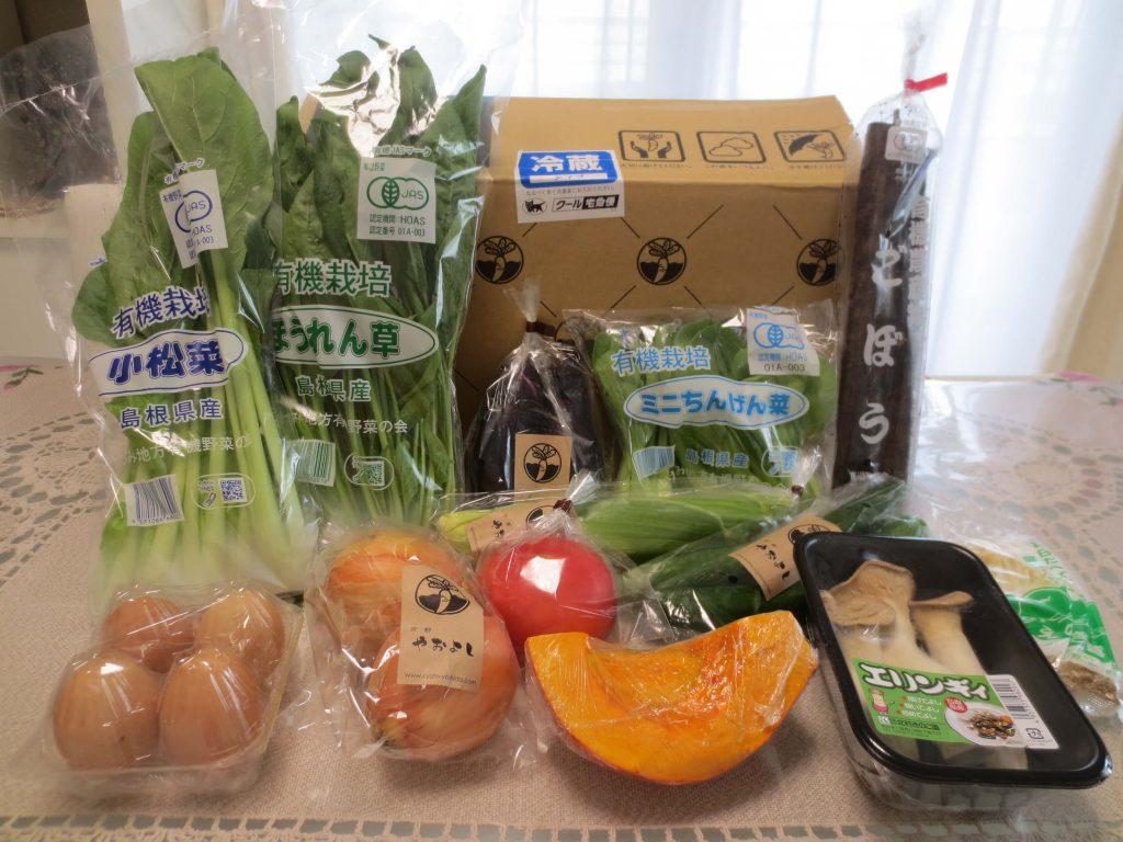 野菜宅配のお試しセット安いランキング・京都やおよし1