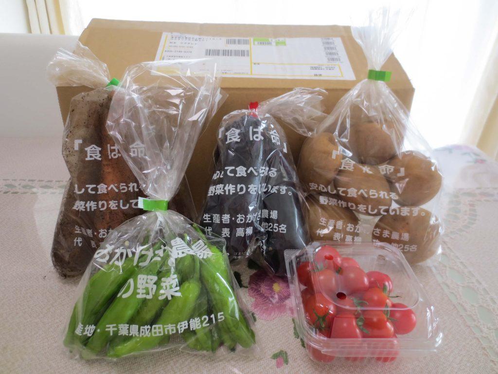 野菜宅配のお試しセット安いランキング・無農薬野菜はにーびー2