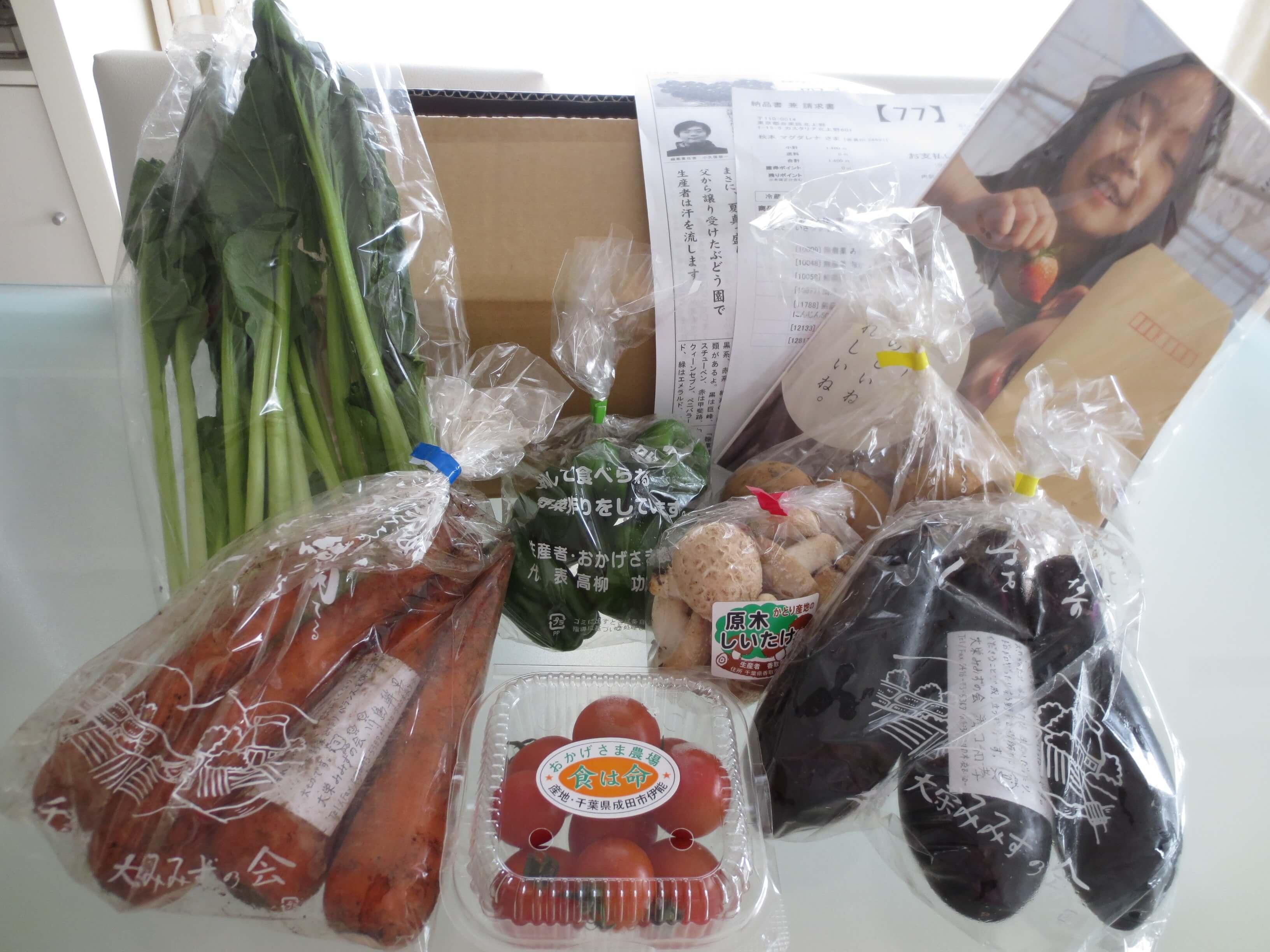 無農薬野菜のミレーお試しセット口コミ4