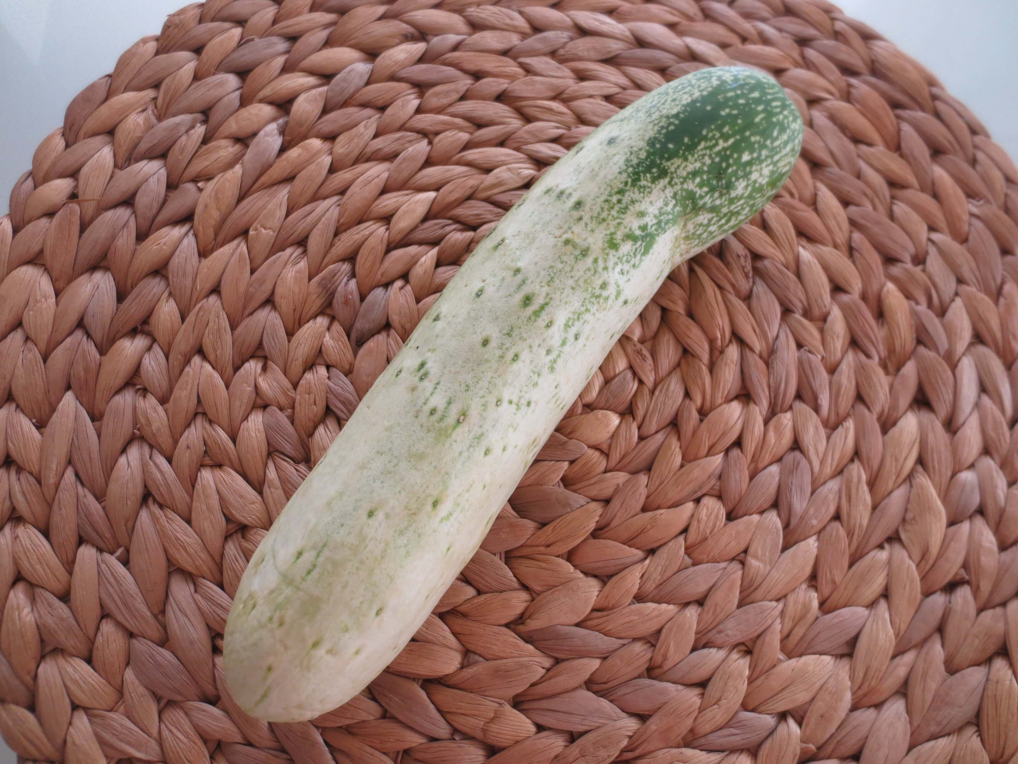 らでぃっしゅぼーやいと愛づらし野菜口コミ7