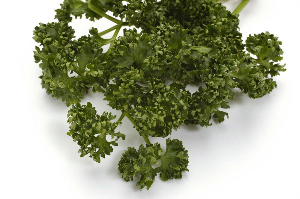 良質な野菜の見分け方・保存方法57