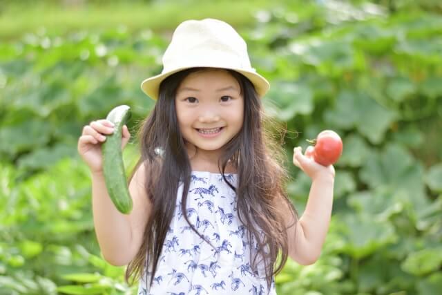 有機野菜、無農薬野菜、減農薬野菜違い4