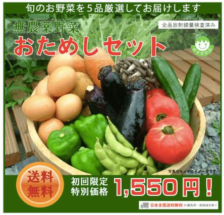 野菜宅配のお試しセット安いランキング・無農薬野菜はにーびー1