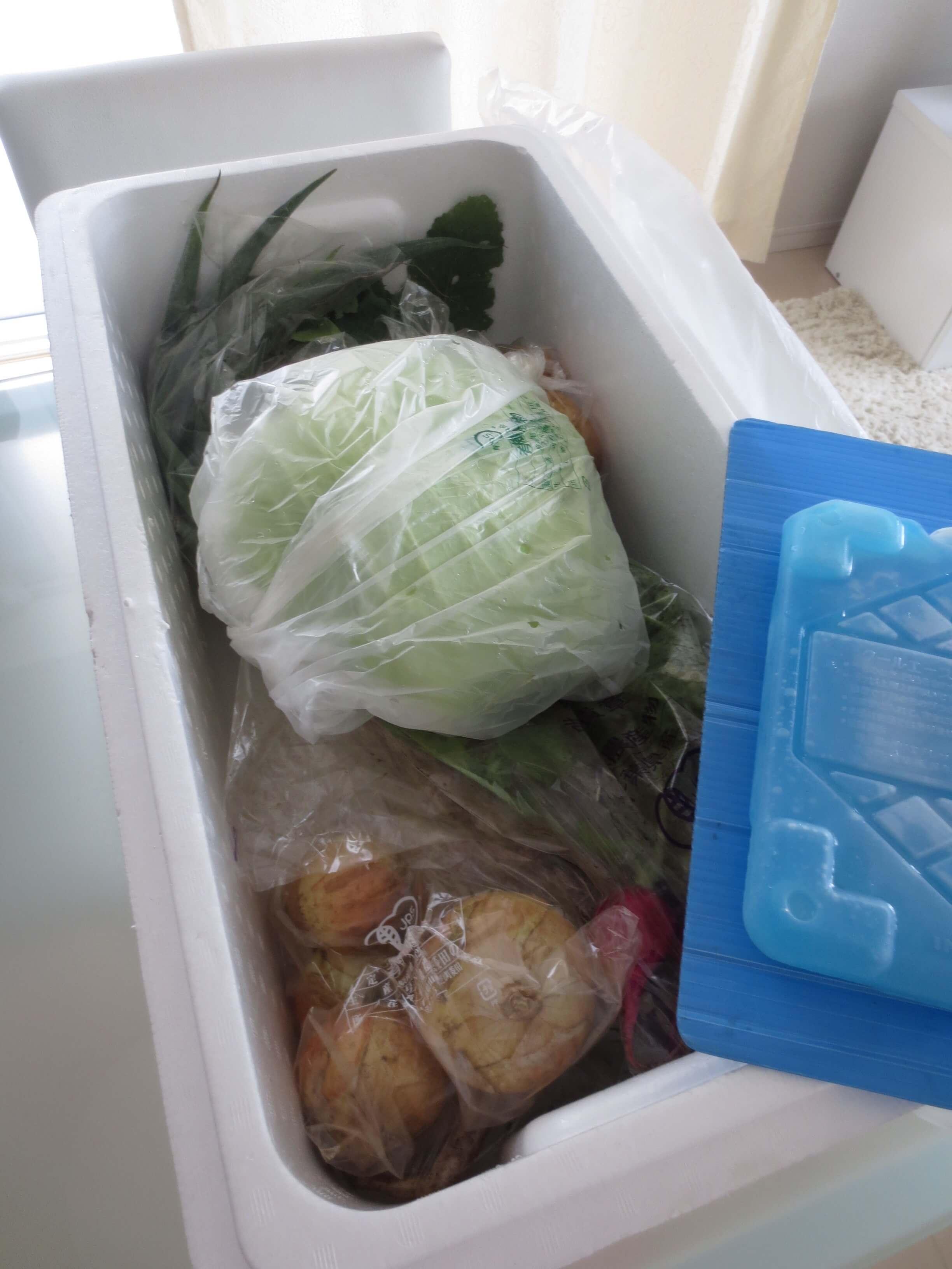 パスシステム有機野菜お試しセット感想16