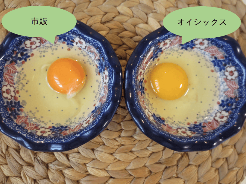 キットオイシックス献立コースの口コミと評判・卵1
