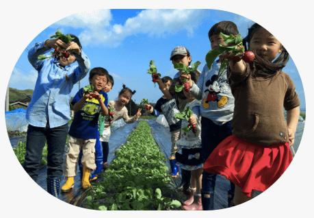シェア畑見学と入会・口コミ・評判18
