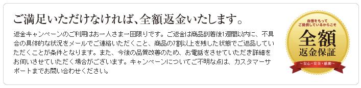 野菜宅配・クリスマスケーキ・おせち口コミ・評判48