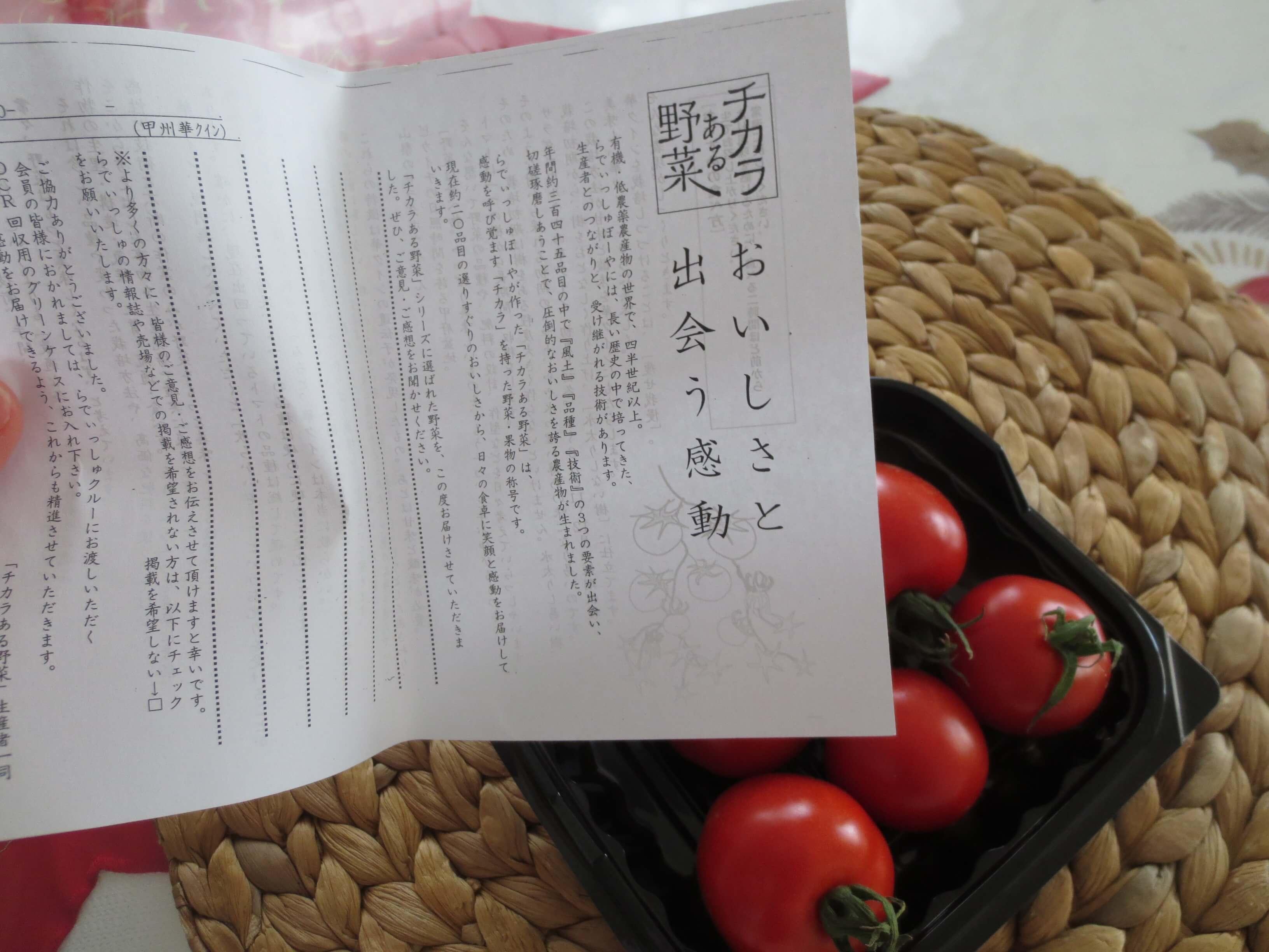 らでぃっしゅぼーや・らくらくパレット・口コミ・評判7