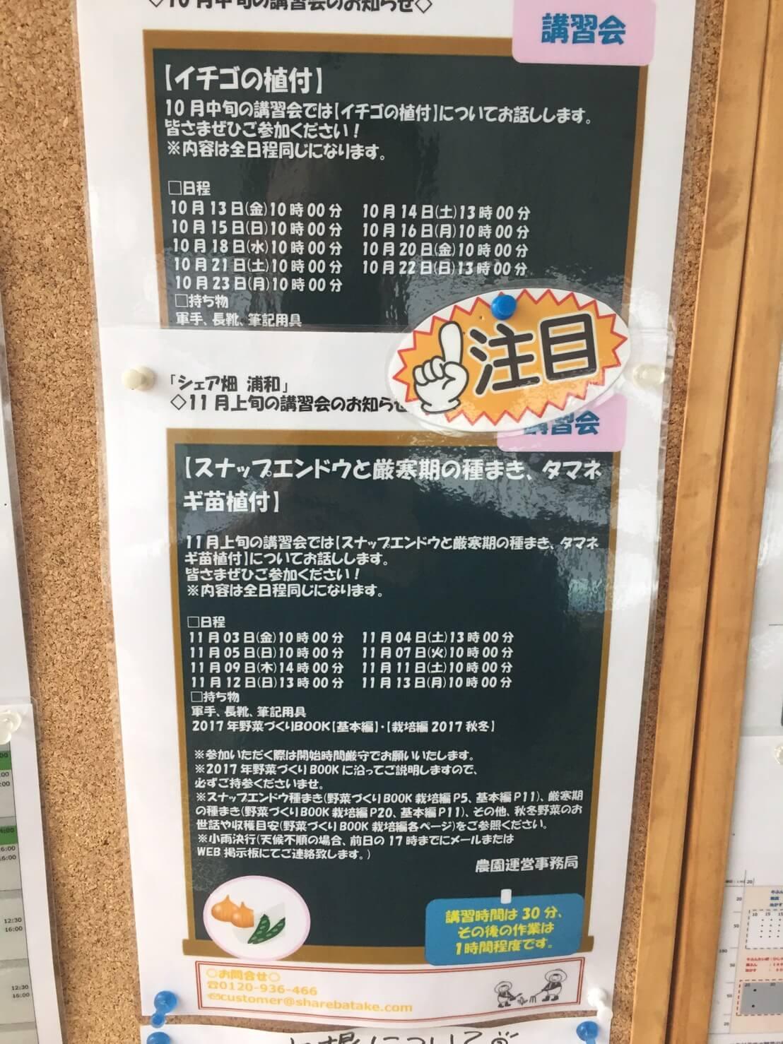 シェア畑・口コミ・Q&A