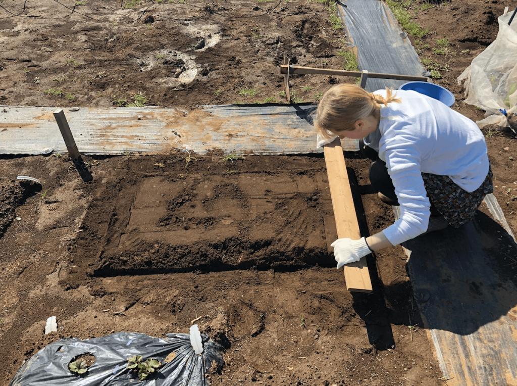 シェア畑・土作り・肥料・ウネの口コミ体験・14