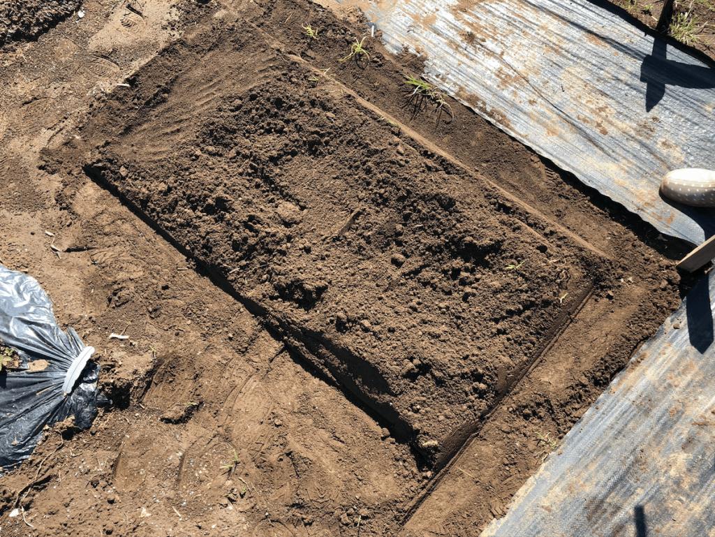 シェア畑・土作り・肥料・ウネの口コミ体験・13