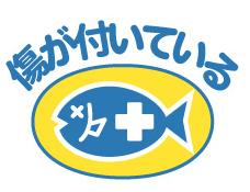 大地を守る会・もったいない魚シリーズ・口コミ・感想・評判25