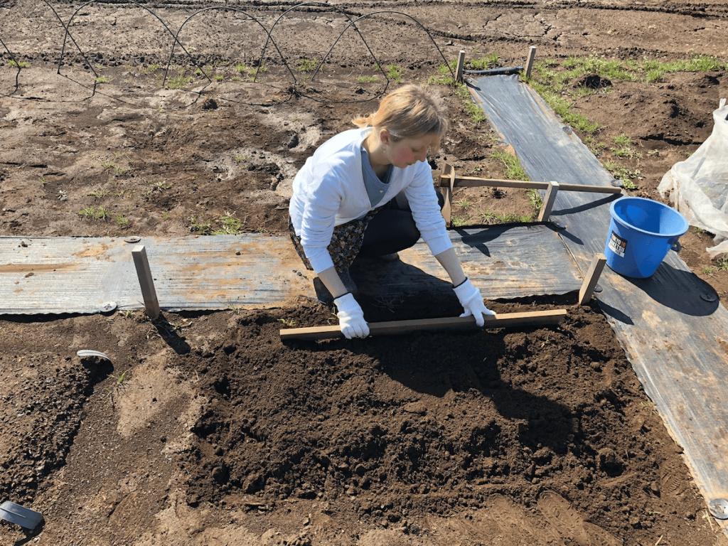 シェア畑・土作り・肥料・ウネの口コミ体験・10