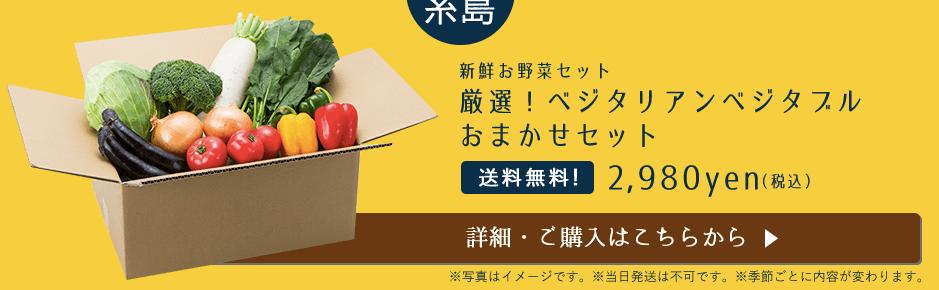 九州逸(くすいち糸島ジタリアンベジタブル・感想と口コミ2