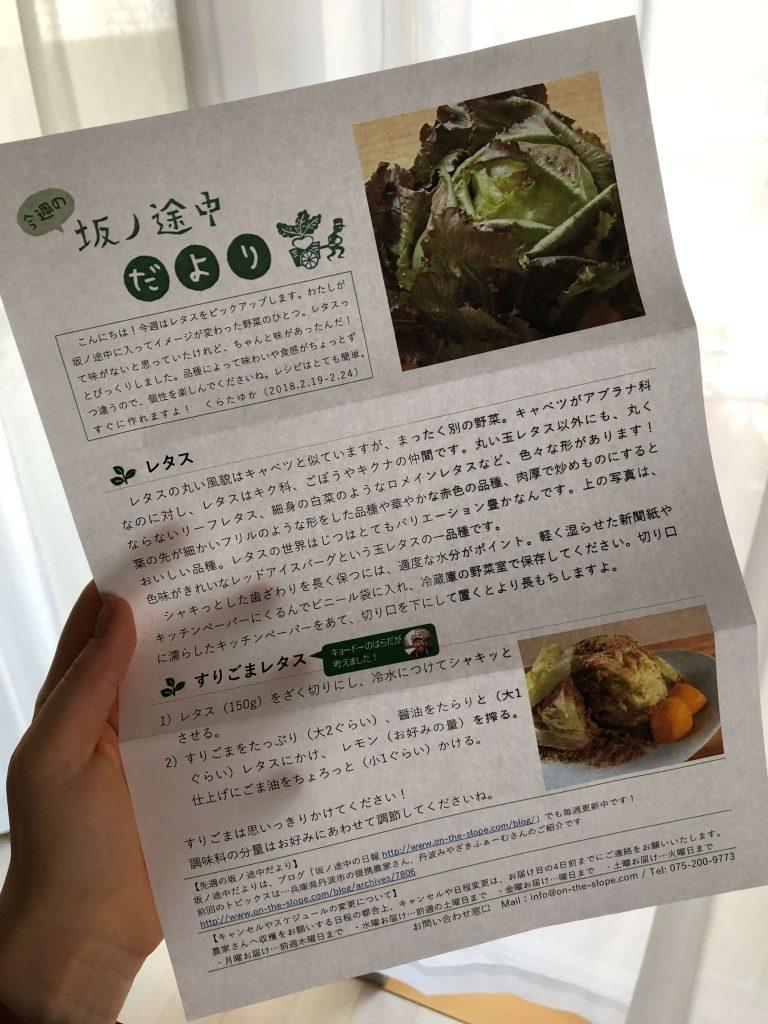 坂ノ途中・野菜セット定期便口コミ36