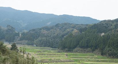 九州逸(くすいち糸島ジタリアンベジタブル・感想と口コミ9