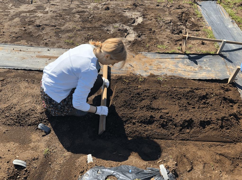 シェア畑・土作り・肥料・ウネの口コミ体験・11