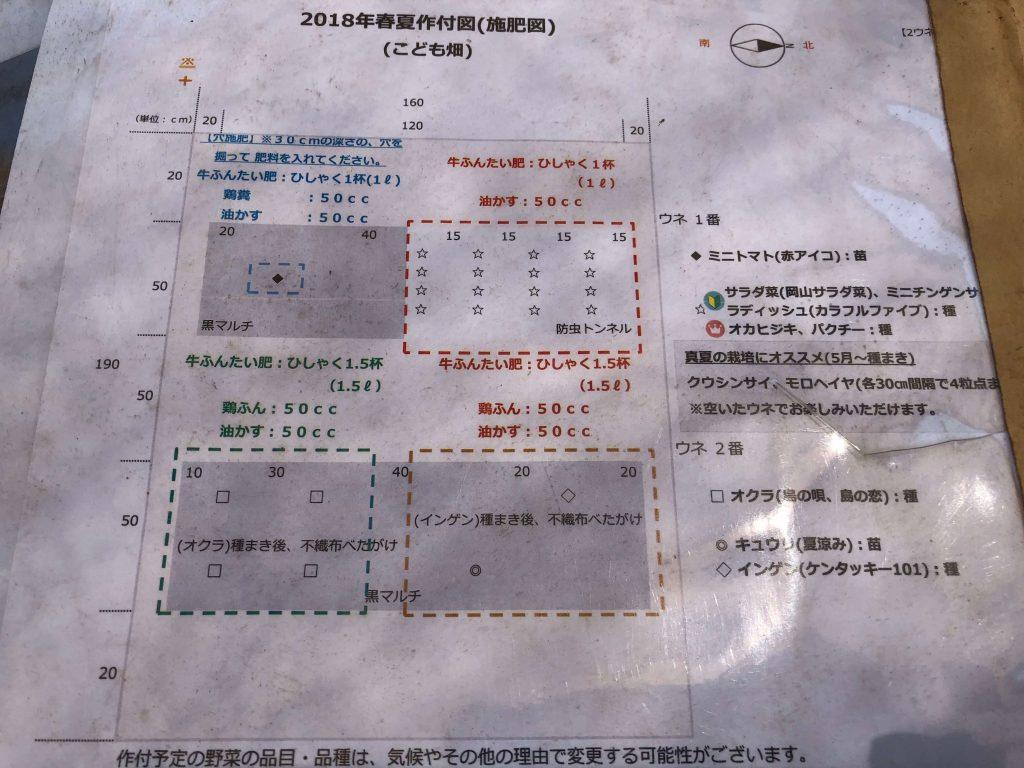 シェア畑・苗種植え付け・口コミと評判2