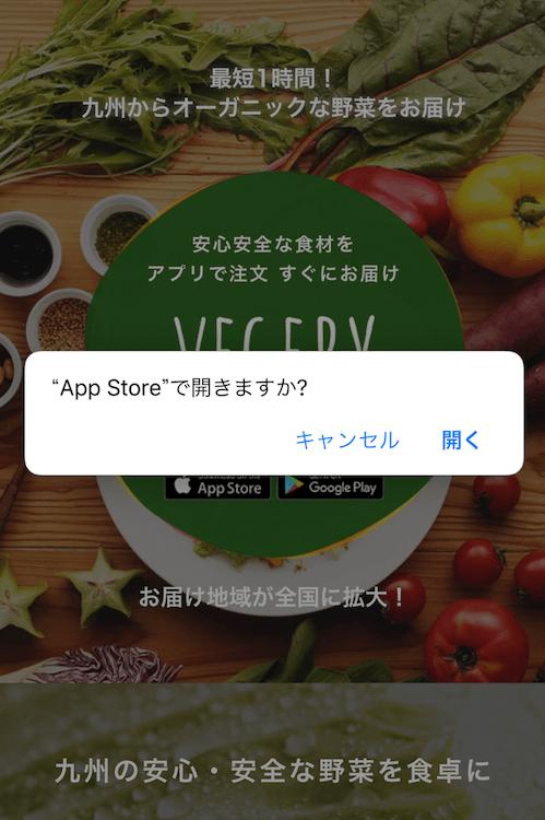 九州の野菜宅配ベジリーの口コミ・評判・メリット・デメリット29
