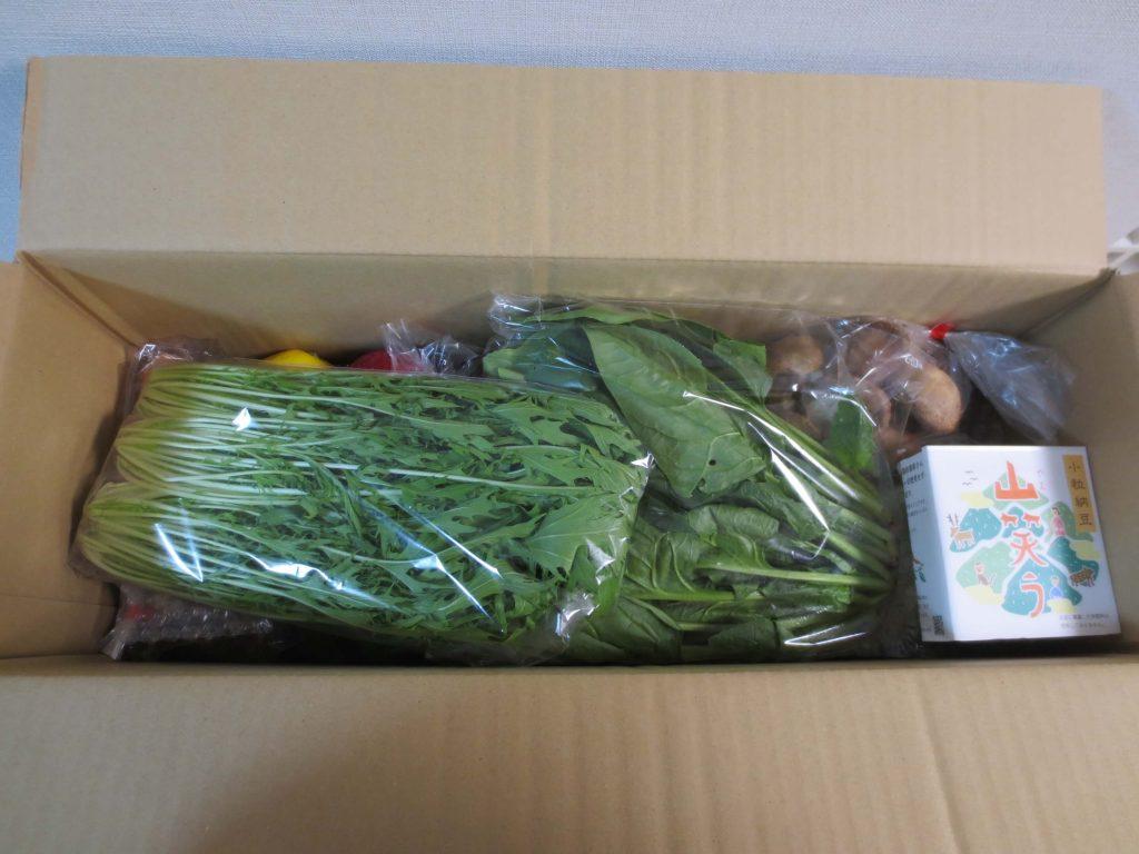 九州の野菜宅配ベジリーの口コミ・評判・メリット・デメリット51