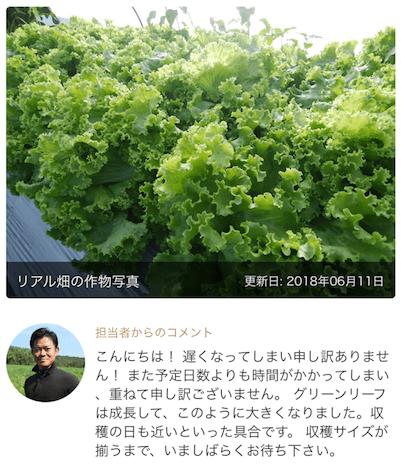 楽天Ragri(ラグリ)定期便野菜セットの口コミ・評判66