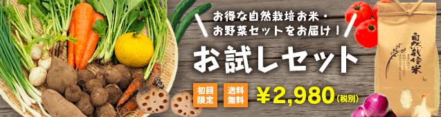 ピュアリィの口コミ・評判・メリット・デメリット1