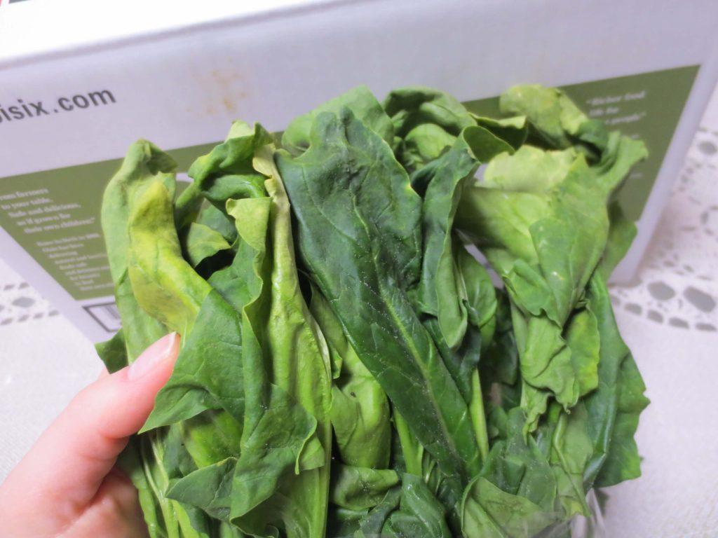 野菜宅配・傷んでいた・虫食いだったときの対応方法7