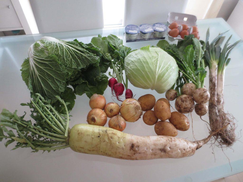 野菜宅配・傷んでいた・虫食いだったときの対応方法3
