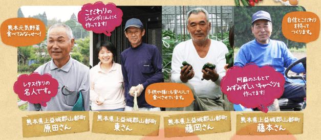 九州野菜王国の口コミ・比較ランキング・お試しセット体験談6