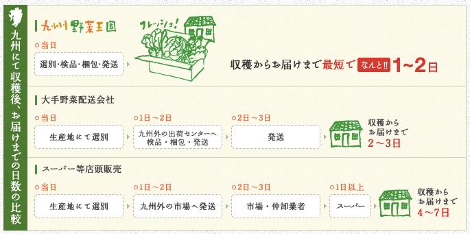 九州野菜王国の口コミ・比較ランキング・お試しセット体験談13
