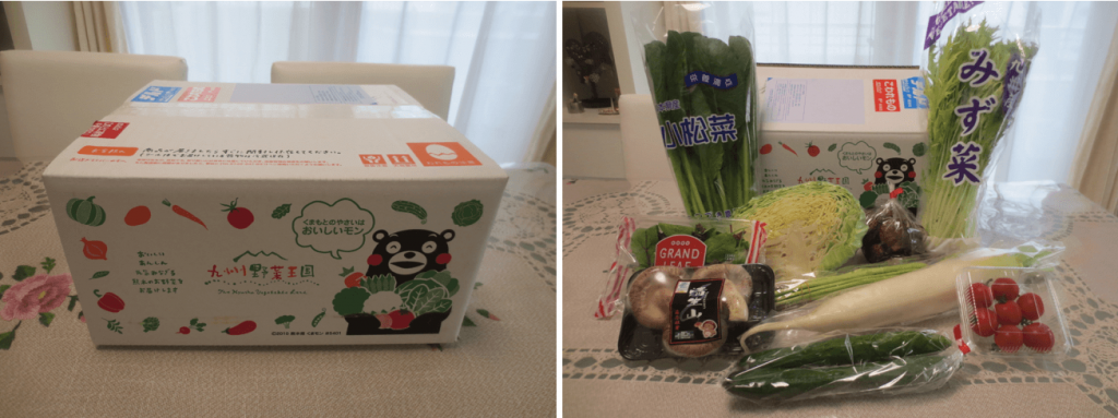 九州野菜王国の口コミ・比較ランキング・お試しセット体験談1