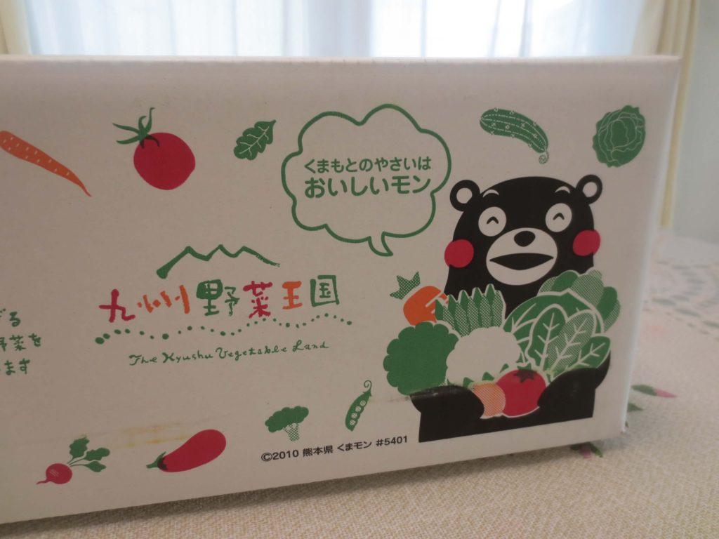 九州野菜王国の口コミ・比較ランキング・お試しセット体験談23