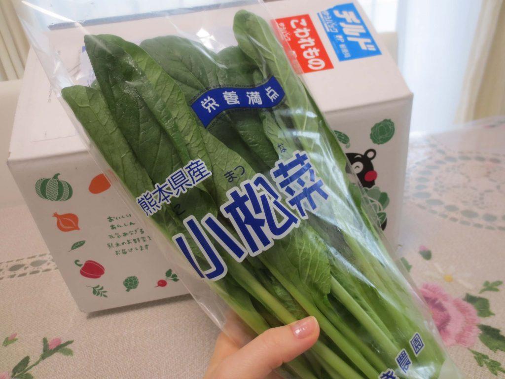 九州野菜王国の口コミ・比較ランキング・お試しセット体験談28