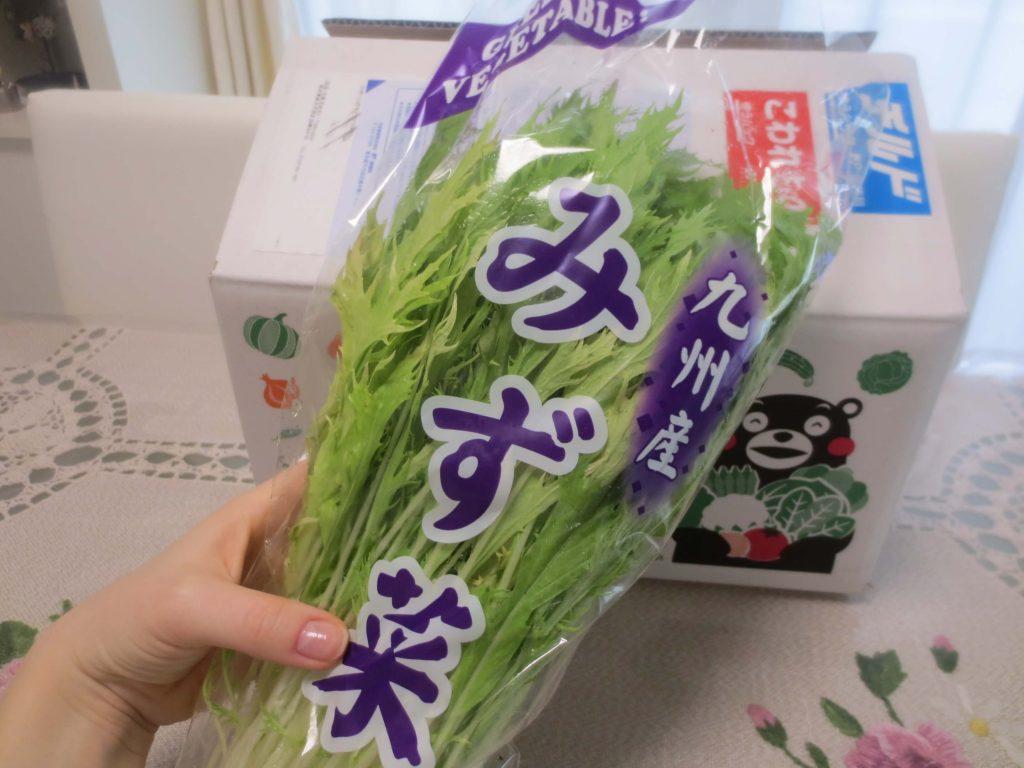 九州野菜王国の口コミ・比較ランキング・お試しセット体験談31