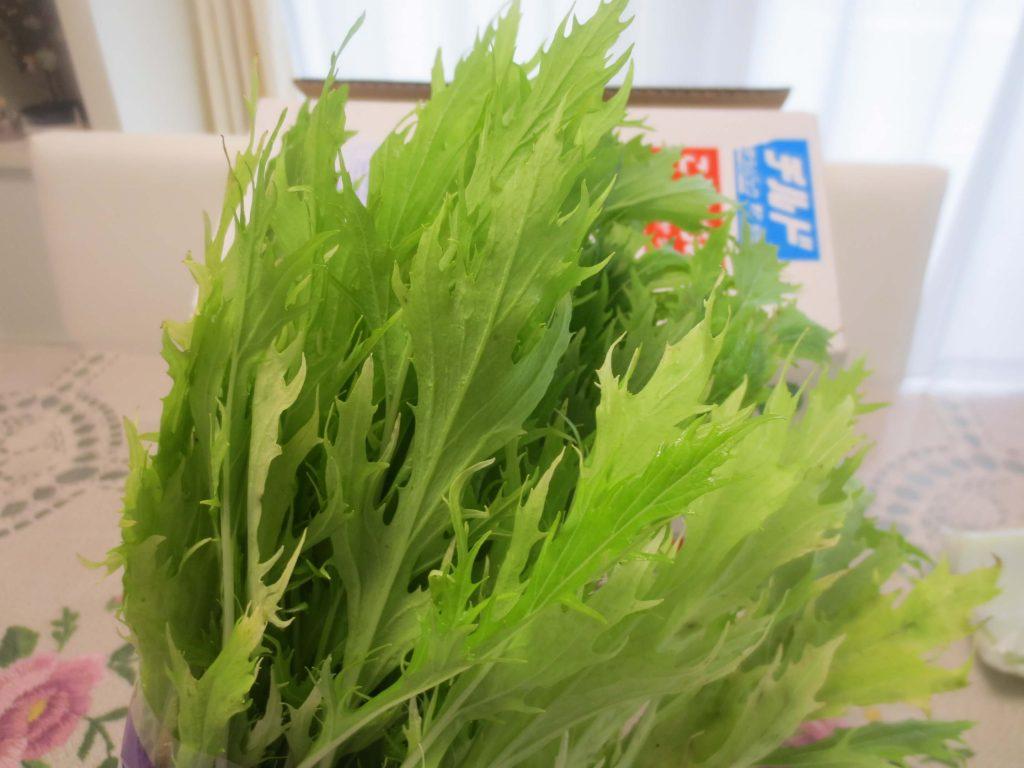 九州野菜王国の口コミ・比較ランキング・お試しセット体験談32